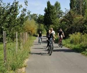 Prolynx sports - rhona-vélo