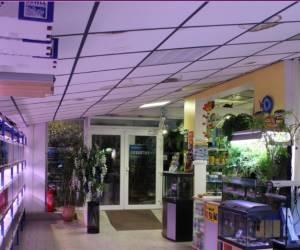Aquarium villeurbannais