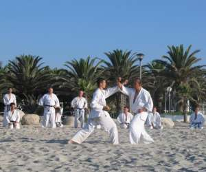 Karate do aiki kan - karate do shotokai valence