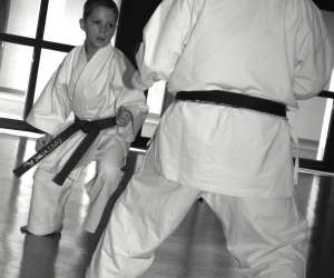 Ecole de karate traditionnel annecienne