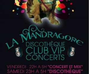 La mandragore (club ,concert,vip)