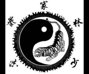 Kung fu et tai chi