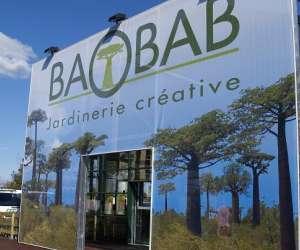 Baobab saint pierre du mont