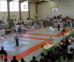 Judo club girondin omnisports