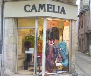 Camélia au