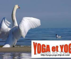 Stage yoga (ludon - 20km de bordeaux)