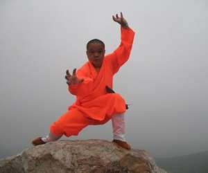Kung fu aquitaine