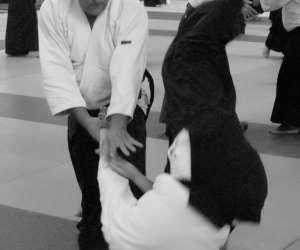 Aikido tartas
