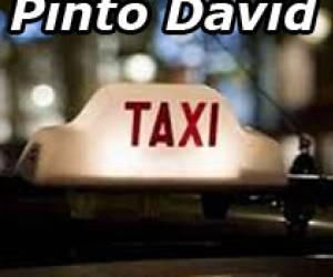 Taxi pinto david