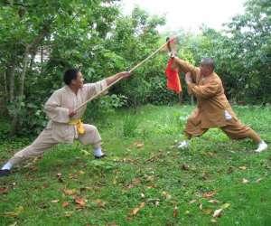 Stages de kung fu