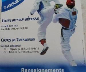 Taekwondo agen