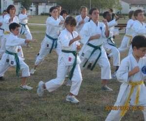 Agen karate do