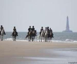 Haras de saint  vivien  - randonnee à cheval en medoc