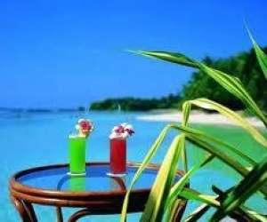 Tropiques-receptions