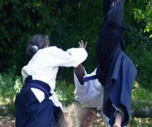 Ju-jutsu traditionnel méthode wa jutsu