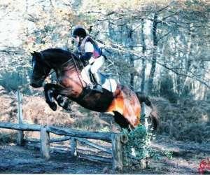 Ferme equestre de peylin