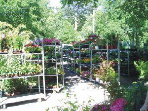 jardinerie du lac sud environnement lacanau 33680 t l phone horaires et avis. Black Bedroom Furniture Sets. Home Design Ideas