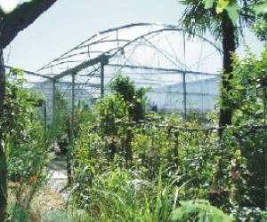 Jardinerie du lac sud environnement