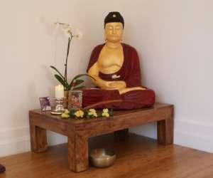 Dharma yoga-kosmo