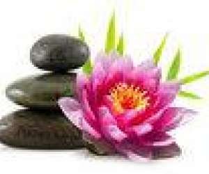 Fiton marinette   massage reiki