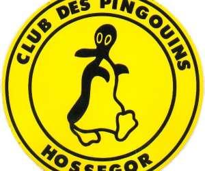 Club des pingouins
