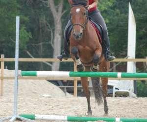 Saubrigues equitation