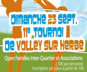 Lons volley club du moulin