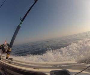 Pêche en mer - promenade