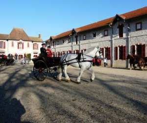 Haras national de villeneuve sur lot