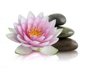 Zen acupuncture