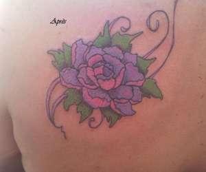 Artecox tattoo