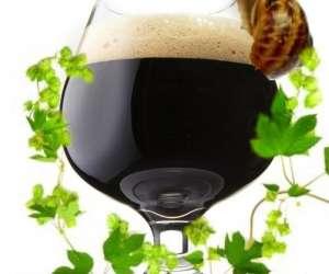 Slow beer france  -  atelier de dégustation de bières