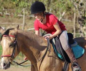 Ecuries mace soen - centre équestre - poney club