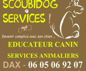 Education canine dax - scoubidogservices
