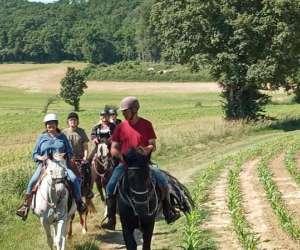 Equitation western de loisirs le ranch des centaurÉes