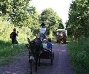 Centre tourisme équestre chevaux et anes des mares