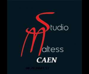 Studio maltess