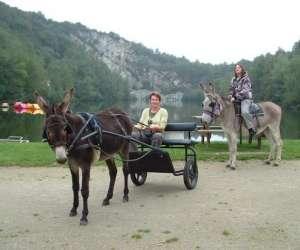 """Centre tourisme equestre """"chevaux et ânes"""""""