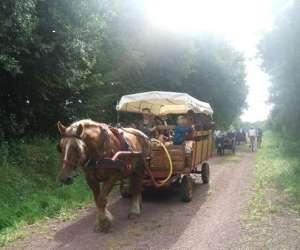 """Centre tourisme equestre """"chevaux et ânes"""" des mares"""