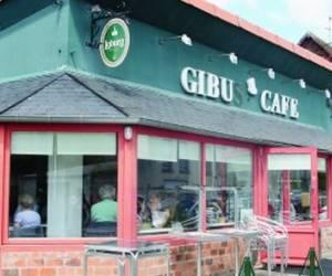 Gibus café
