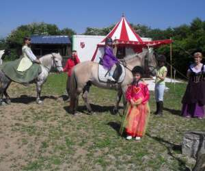 Cte chevaux et anes des mares