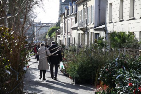 Foire aux arbres et aux plantes de lisieux lisieux 14100 for Piscine lisieux horaires