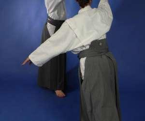 Kinomichi et arts du geste