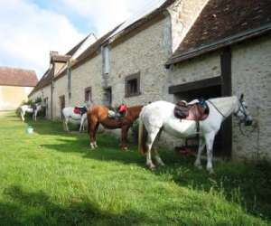 Ferme equestre la pichardi�re