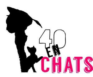 Association 40 en chats