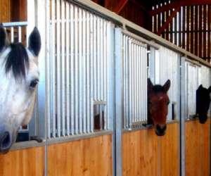 Centre equestre les ecuries de marlau