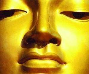 Massage thailandais et formation à www.suntaya.com