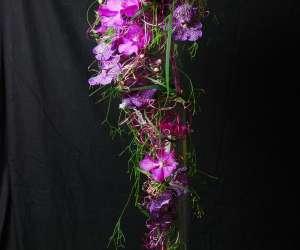 D. fleurs