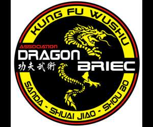 Ecole de wushu dragon briec