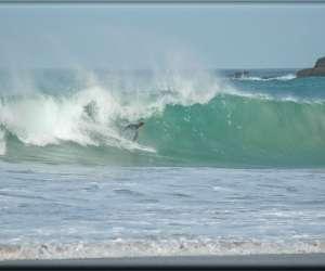 école de surf du léon